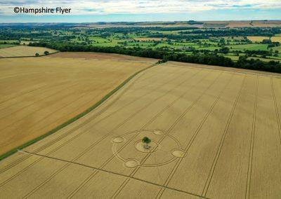 Potterne Field, nr Devizes, Wilts    4th Aug 2020   Wheat   L3
