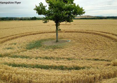 Potterne Field, nr Devizes, Wilts    4th Aug 2020   Wheat   Low2