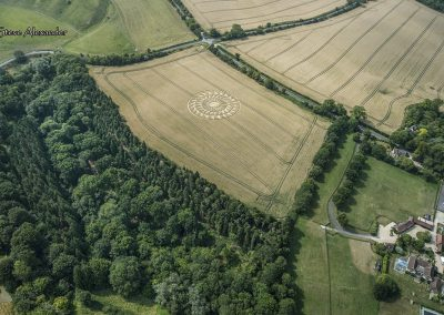 Uffington Castle, Oxon | 9th August 2020 | Wheat | HL