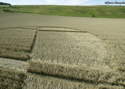 Chirton Bottom,  Chirton, Wilts |  5th Sept 2020 | Wheat | Low3