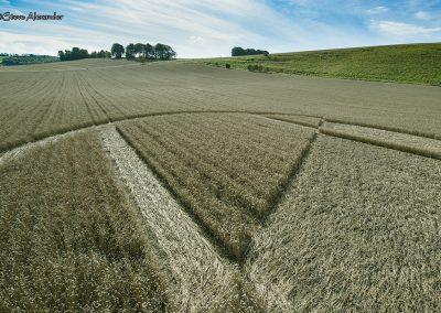 Chirton Bottom,  Chirton, Wilts |  5th Sept 2020 | Wheat | Low4
