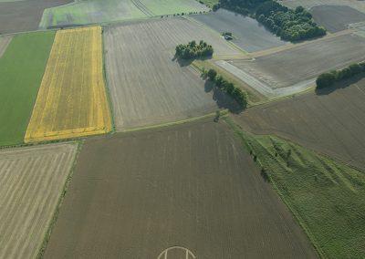 Chirton Bottom,  Chirton, Wilts |  5th Sept 2020 | Wheat | HL