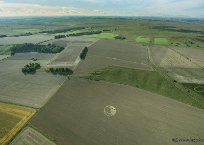 Chirton Bottom,  Chirton, Wilts |  5th Sept 2020 | Wheat | HL2