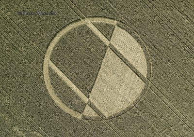 Chirton Bottom,  Chirton, Wilts |  5th Sept 2020 | Wheat | OH2