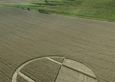 Chirton Bottom,  Chirton, Wilts |  5th Sept 2020 | Wheat | L