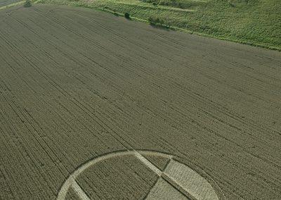 Chirton Bottom,  Chirton, Wilts |  5th Sept 2020 | Wheat | L2