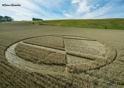 Chirton Bottom,  Chirton, Wilts |  5th Sept 2020 | Wheat | Low