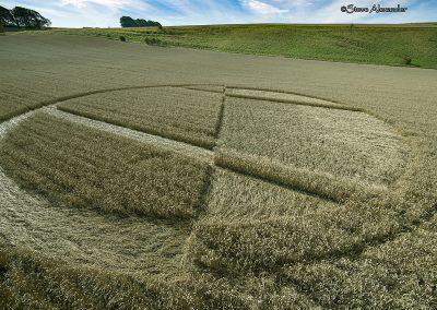 Chirton Bottom,  Chirton, Wilts |  5th Sept 2020 | Wheat | Low2