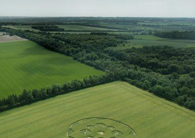 South Wonston, Hants | 8th June 2021 | Barley | 200ft Approx | L3