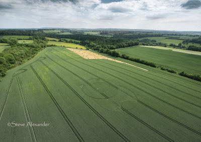 Wootton Rivers, Wilts | 9th June 2021 | Wheat | L2