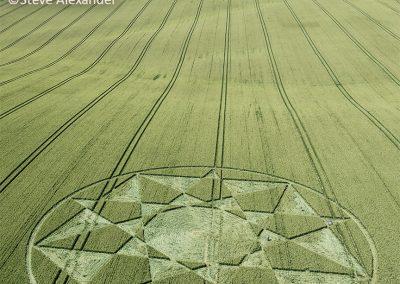 Longwood Warren, Hants | 4th July 2021 | Wheat | LSA