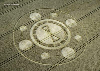 Spiers Lane, Nr Swarraton, Hants | 1st August 2021 | Wheat | OHSA
