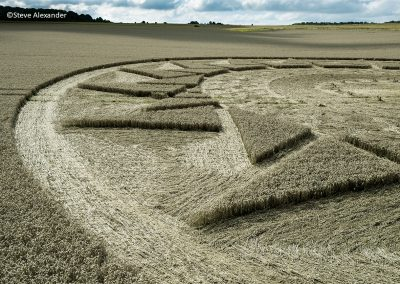 Roundway Hill, Wilts | 15th August 2021 | Wheat | Low 4/SA