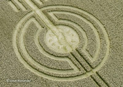 Watership Down, Sydmonton, Hants    11th August 2021   Wheat   CL