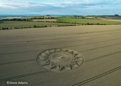 Roundway Hill, Wilts | 15th August 2021 | Wheat | LSA