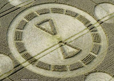 Spiers Lane, Nr Swarraton, Hants | 1st August 2021 | Wheat | CLSA