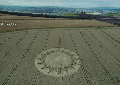 Roundway Hill, Wilts | 15th August 2021 | Wheat | LSA2B