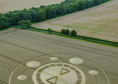 Spiers Lane, Nr Swarraton, Hants | 1st August 2021 | Wheat | LSA