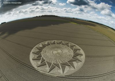 Roundway Hill, Wilts | 15th August 2021 | Wheat | FE/SA